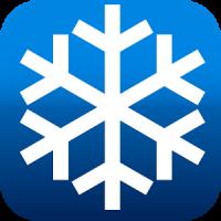Ski logo