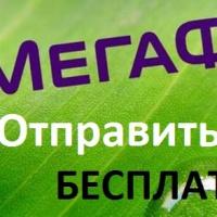 otpravit-sms-besplatno-megafon3